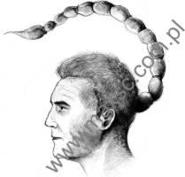 Ekslibris ze zdodiakiem skorpion
