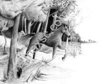 Ekslibris z koniem