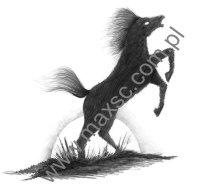 Exlibris z koniem 2