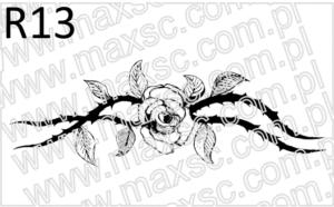 Różą z łodygą