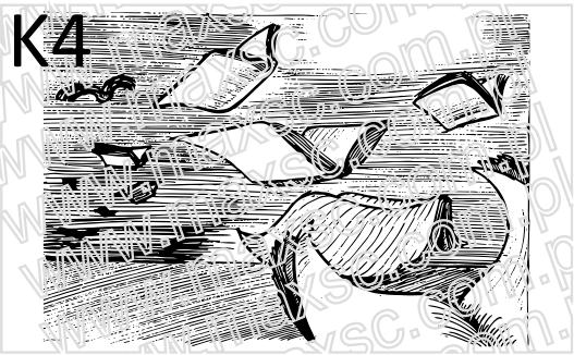 K4-grafika-exlibris-latajace-ksiazki